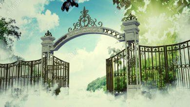 Heaven Gate Ozbike