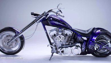 Purple Xcellence 11