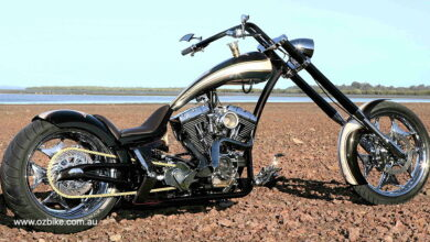 Chopper Fit for a King 7
