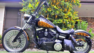 The Angry Harley motorbike 2