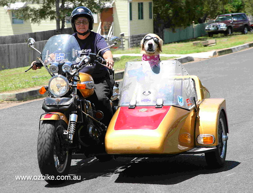 Triumph motorcycle with sidecar 1